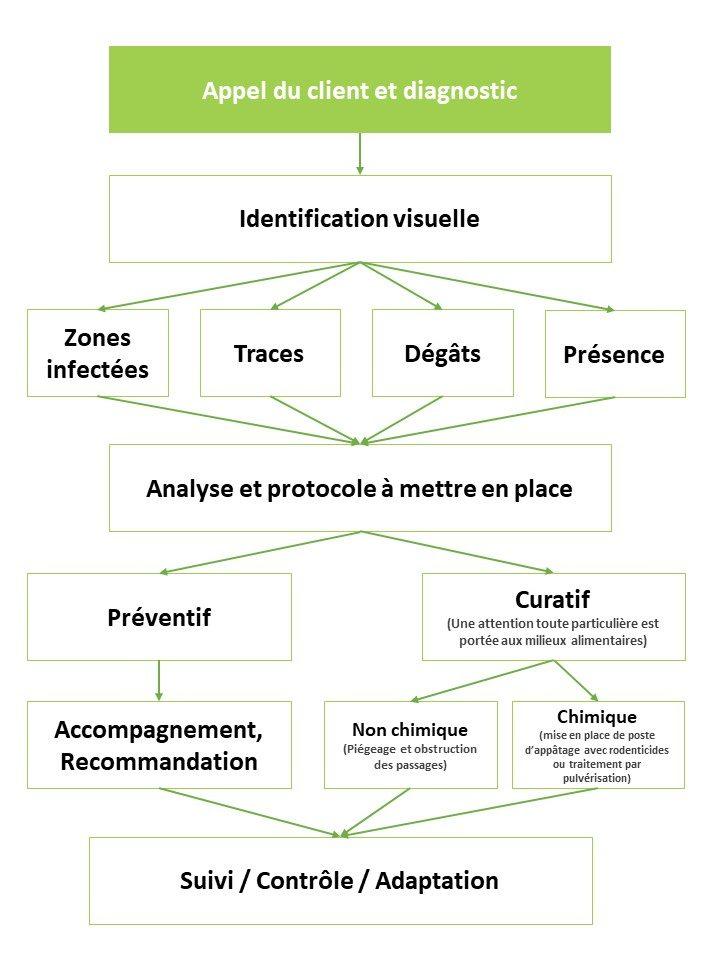 methodologie ajpgroup deratisation desinsectisation desinfection plaisir yvelines